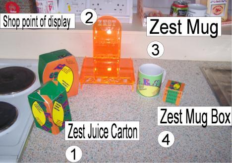 zest practical2