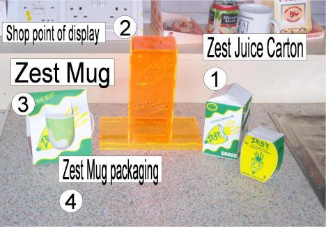 zest practical3