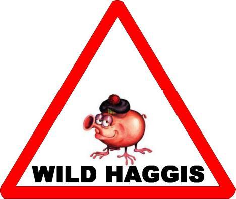 WILD HAGGIS